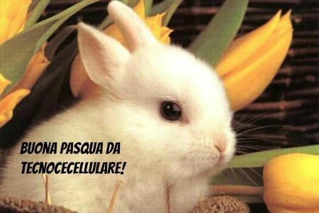 pasqua-2013-tanti-auguri-ai-nostri-lettori
