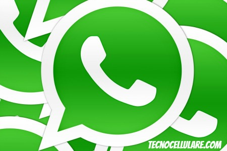 ceo-di-whatsapp-chiamate-vocali-gratuite-entro-lanno